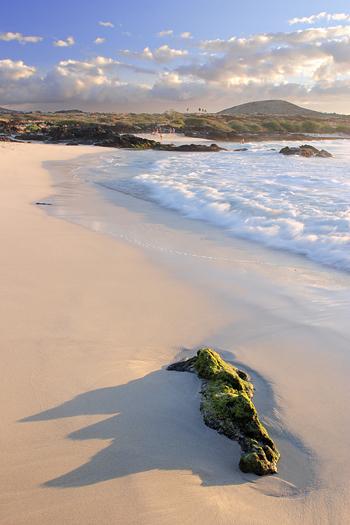 A white sand beach along the Kohala coast of the big island of Hawaii.