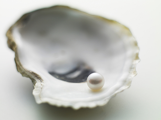 Single pearl on an oyster shell