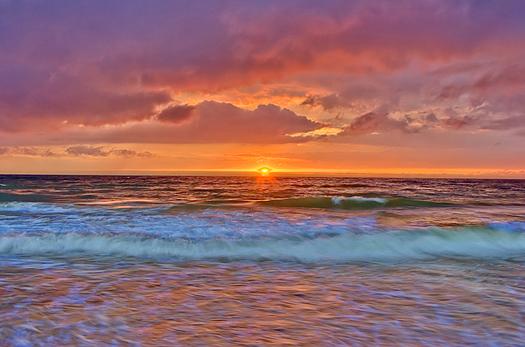 summer landscape with ocean sunset