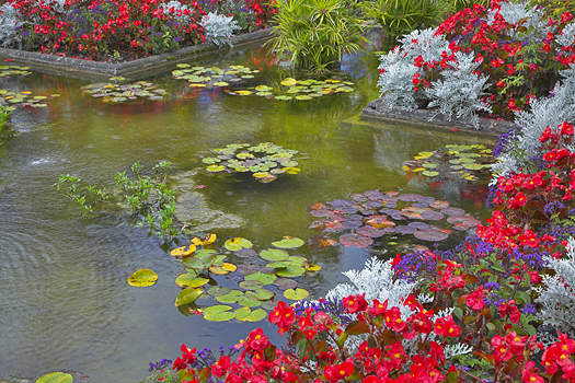 A pond and flowers in a Canadian park.