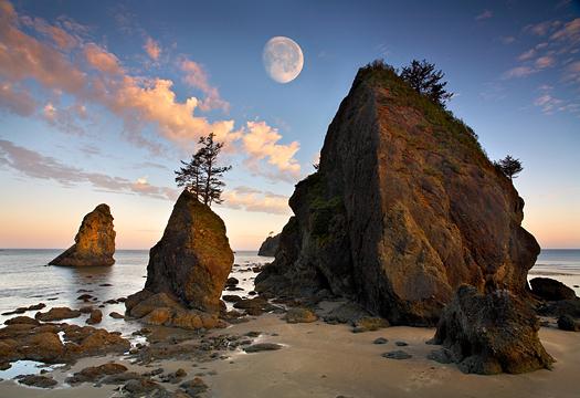 Shi Shi Beach. Washington State.