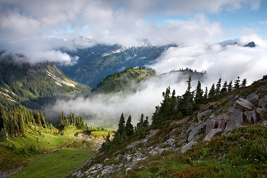 Clouds in a valley near Mount Rainer