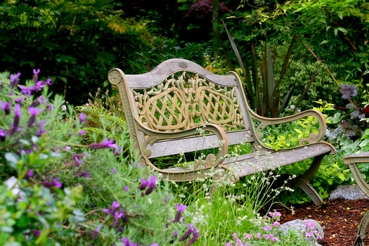 Garden bench in flower garden