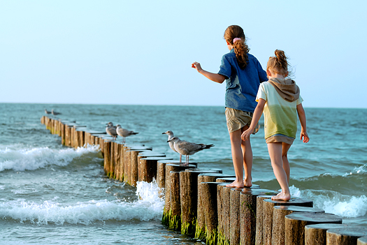 Two young girls and a few seagulls on a wooden pier at the seashore