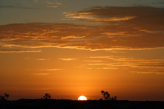 Australian Outback landscape during a sunset.