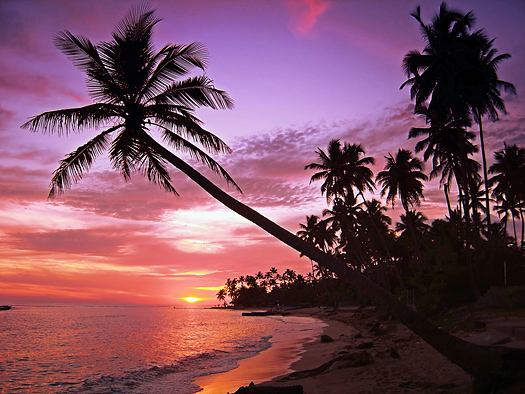 Beautifull pink and purple tropical sunset at sea