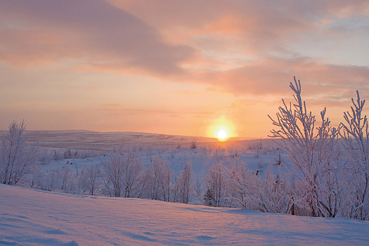 Winter sunset over snow-covered field