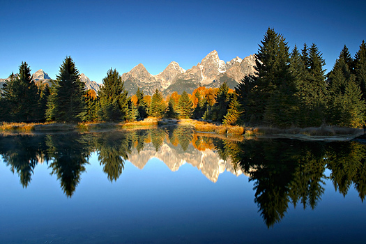 Fall Morning in Grand Teton National Park