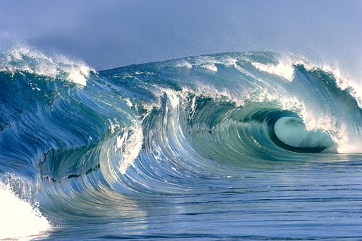 Large, curling wave