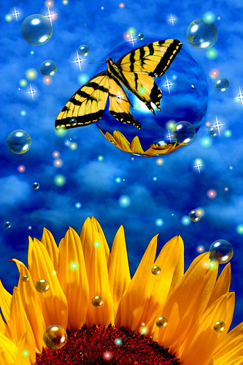 Surreal butterfly on bubble with sunflower and stars