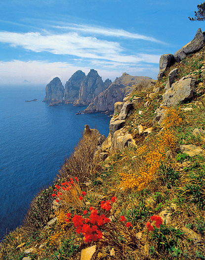 Rockyt shore line with yellow and red flowers on a hillside