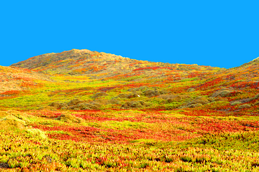 Colorful hills of yellow and red against brilliant blue sky