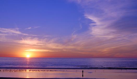 Beach sunset with a peaceful man and birds
