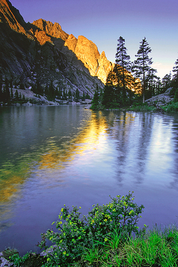 mountain sunrise and flowers reflected in the waters of willow lake in the crestone range of the colorado rocky mountains usa north america