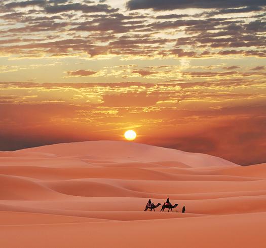 Caravan in Sahara desert. Pink sand, sunset sky