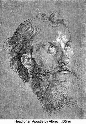 Head of an Apostle by Albrecht Dürer