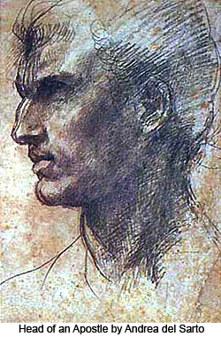 Head of an Apostle by Andrea del Sarto