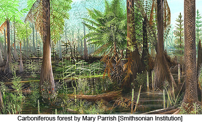 Carboniferous forest by Mary Parrish [Smithsonian Institution]