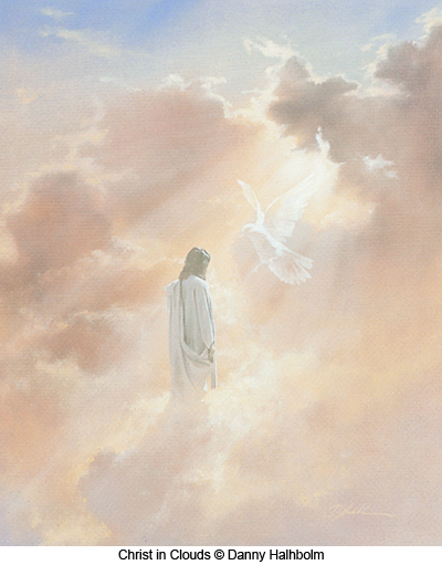 Christ in Clouds by Danny Halhbolm
