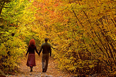 Couple walking in an Autumn forest by Don Paulson