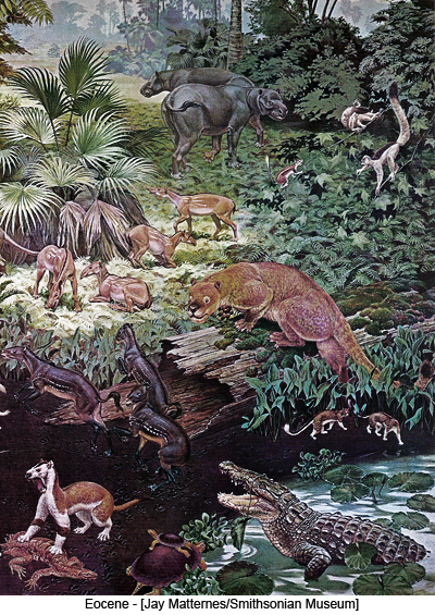 Eocene - [Jay Matternes/Smithsonian Museum]