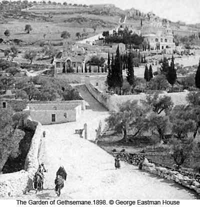 The Garden of Gethsemane, 1898 photograph