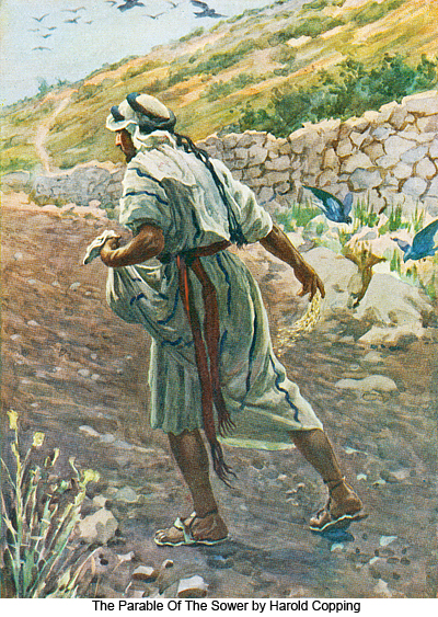 The Parable Of The Sower by Harold Copping