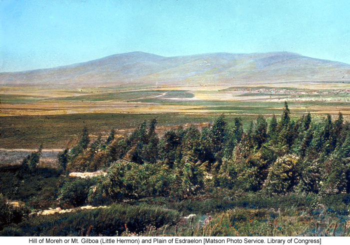 Hill of Moreh or Mt. Gilboa (Little Hermon) and Plain of Esdraelon [Matson Photo Service. Library of Congress]