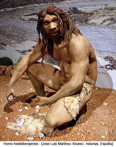 Homo heidelbergensis - [Jose Luis Martinez Alvarez from Asturias, España]