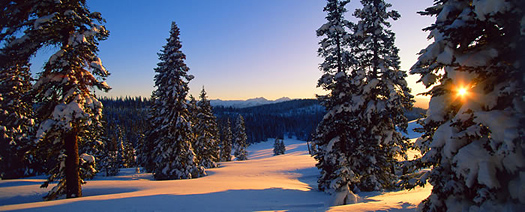Winter Sunset #1 - White River National Forest near Aspen