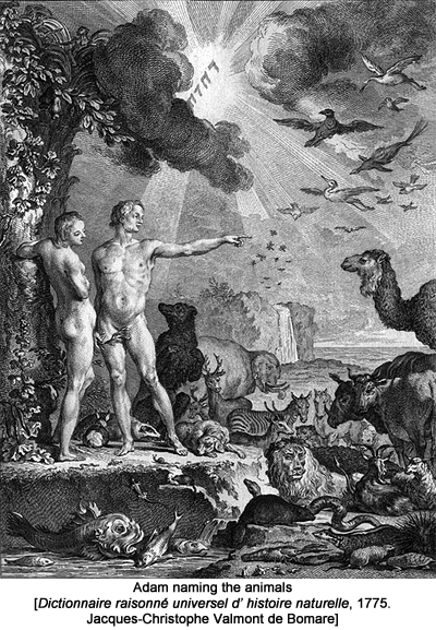 Adam naming the animals. Dictionnaire raisonné universel d' histoire naturelle, 1775. Jacques-Christophe Valmont de Bomare