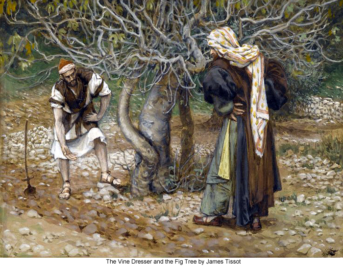 The Vine Dresser and the Fig Tree by James Tissot