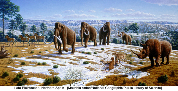 Late Pleistocene. Northern Spain - [Mauricio Antón/National Geographic/Public Library of Science]