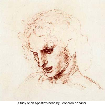 Study of an Apostle's Head by Leonardo da Vinci