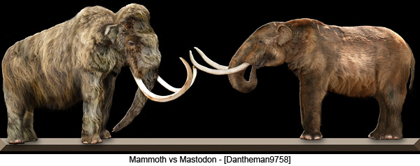 Mammoth vs Mastodon - [Dantheman9758]