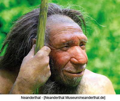 Neanderthal - [Neanderthal  Museum/neanderthal.de]