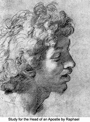 Study for the Head of an Apostle by Raphael