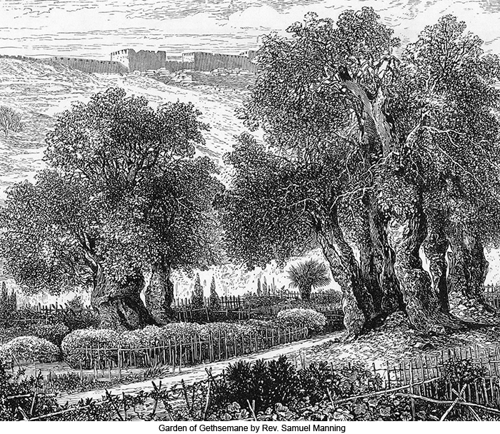 Garden of Gethsemane by Rev. Samuel Manning