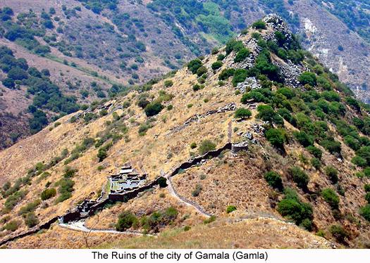 Ruins of the city of Gamala (Gamla), photograph