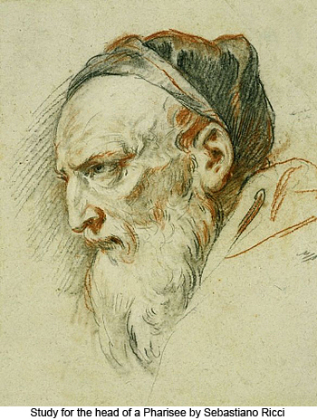 Study for the Head of a Pharisee by Sebastiano Ricci