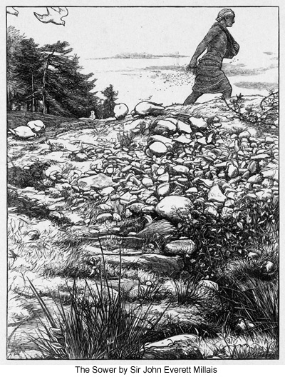 The Sower by Sir John Everett Millais