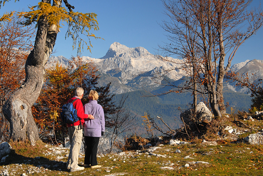 Old couple looking on mountains, Slovenia, Europe